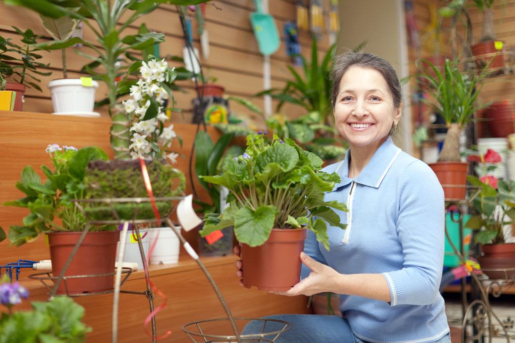 Social enterprise - Gardening